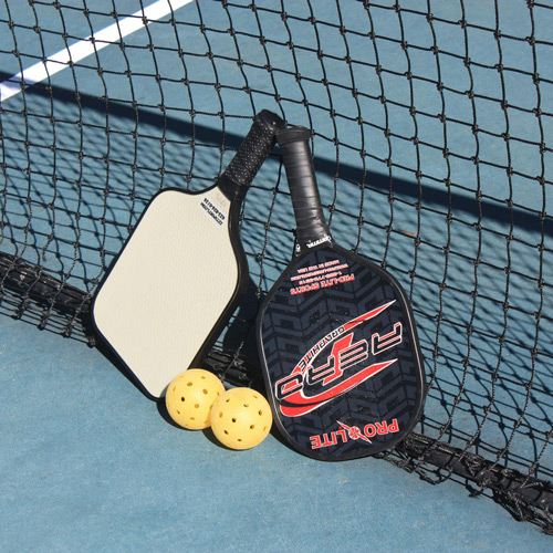 Pickleball Paddle Reviews
